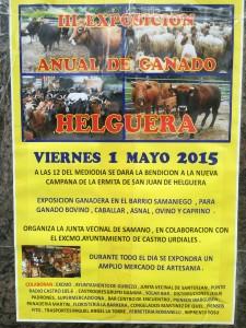 Exposición Ganado Helguera 1 Mayo 2015