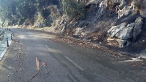 Carretera Sonabia sucia tras Incendios (2)