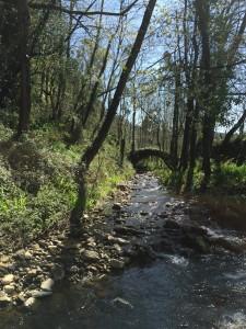 Puente sobre río Otañes