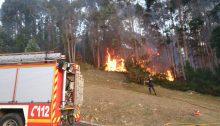Incendio vegetación junto Vela Mayor (1)