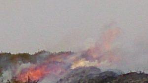 Incendio Cerredo 30-mar (1)