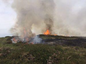 Incendio Cerredo 30-mar (10)