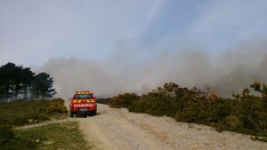 Incendio Cerredo 30-mar (2)