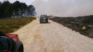 Incendio Cerredo 30-mar (3)