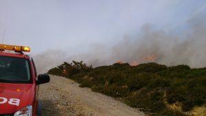 Incendio Cerredo 30-mar (4)
