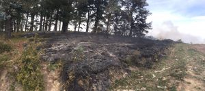 Incendio Cerredo 30-mar (9)
