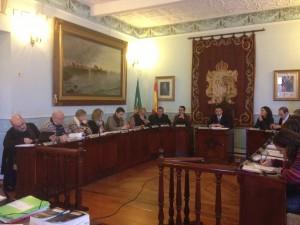 Pleno Ayuntamiento 6-Febrero (4)