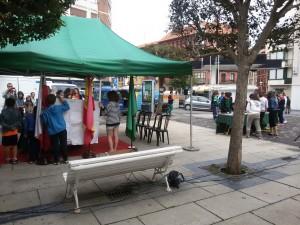 Dia del Libro Plaza Mercado (2)