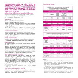 Subvenciones Conciliación vida laboral y familiar (2)