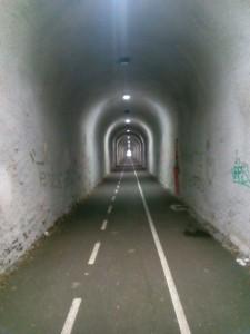 Reparadas luces Tunel Mioño (2)