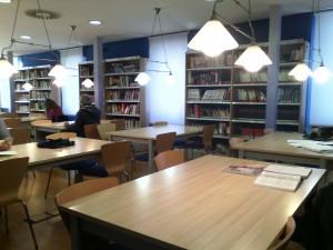 Biblioteca Municipal (1)
