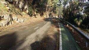 Carretera Sonabia sucia tras Incendios (1)