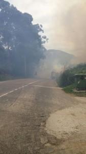 Incendio Forestal Alto de la Cruz (2)