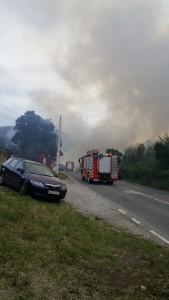 Incendio Forestal Alto de la Cruz (3)