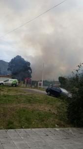 Incendio Forestal Alto de la Cruz (4)