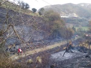 Incendio Forestal Alto de la Cruz (6)