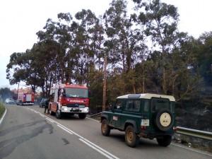 Incendio Forestal Alto de la Cruz (7)