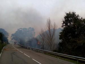 Incendio Forestal Alto de la Cruz (8)