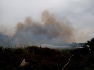 Nuevo Incendio Vegetación Mioño (1)
