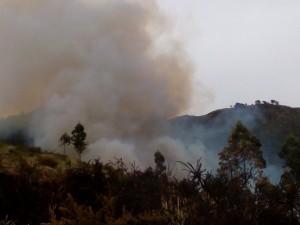 Nuevo Incendio Vegetación Mioño (2)