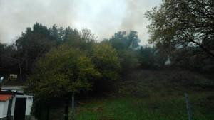 Nuevo Incendio Vegetación Mioño (4)