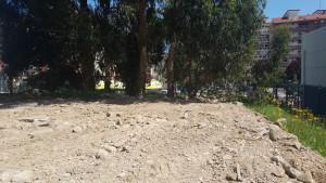 Allanado terreno Barracas Pachi Torre (4)