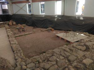 Ruinas Flaviobriga con Victor Aguirre (4)