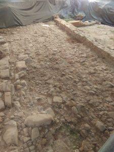 Ruinas Flaviobriga con Victor Aguirre (5)