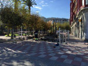 Peatonalizacion Los Jardines (1)