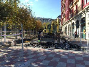 Peatonalizacion Los Jardines (2)