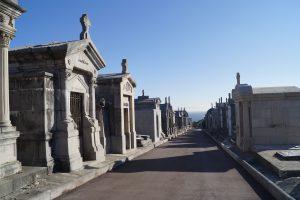 Cementerio Ballena (2)